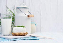 מטריקס החלב – השלם גדול מסך חלקיו