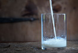 חלב – עובדות או מיתוסים: האם קיימת הנחייה של ארגוני הבריאות לצרוך חלב ומוצריו?