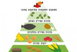 פירמידת המזון והנחיות לתזונה נכונה – מערך שיעור