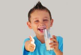 """תכנית ליום פעילות שכבתית בנושא החלב לביה""""ס היסודי"""