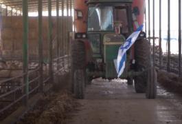 חלב ישראלי זה חוסן לאומי